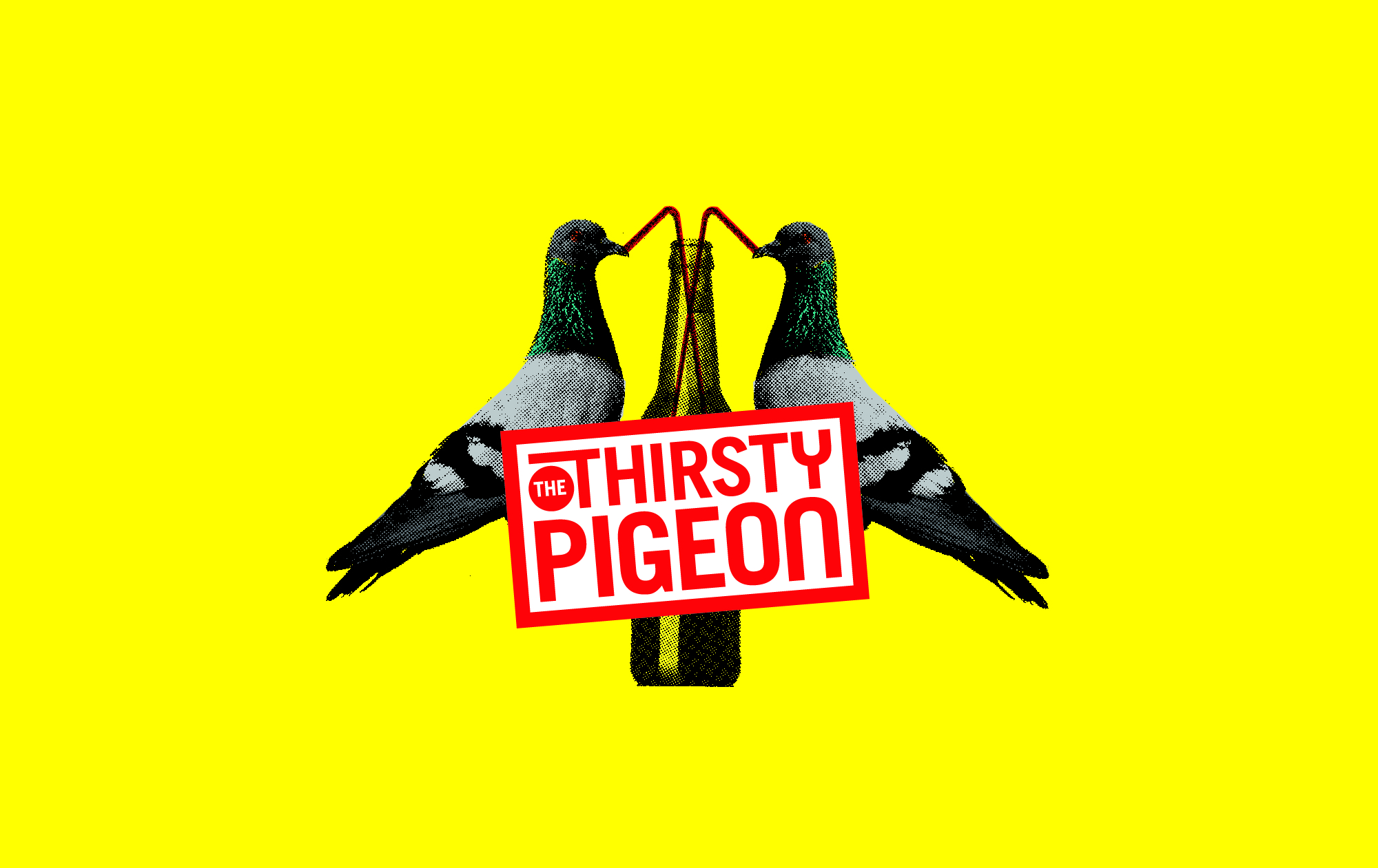 Thirsty Pigeon Logomark Branding